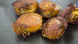 【燻製レシピ】安いホタテは燻製にして酒のツマミに!燻製ホタテの作り方