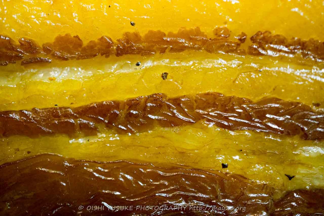 黄金ベーコンの見事な層